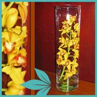 Orchid Cylinder